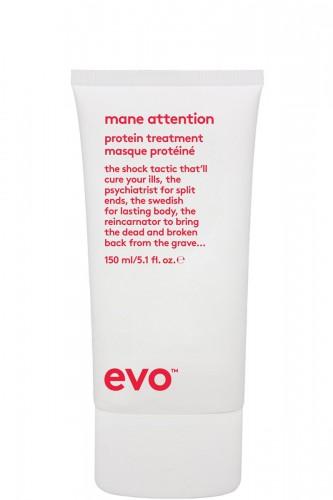 EVO mane attention -  kuracja...